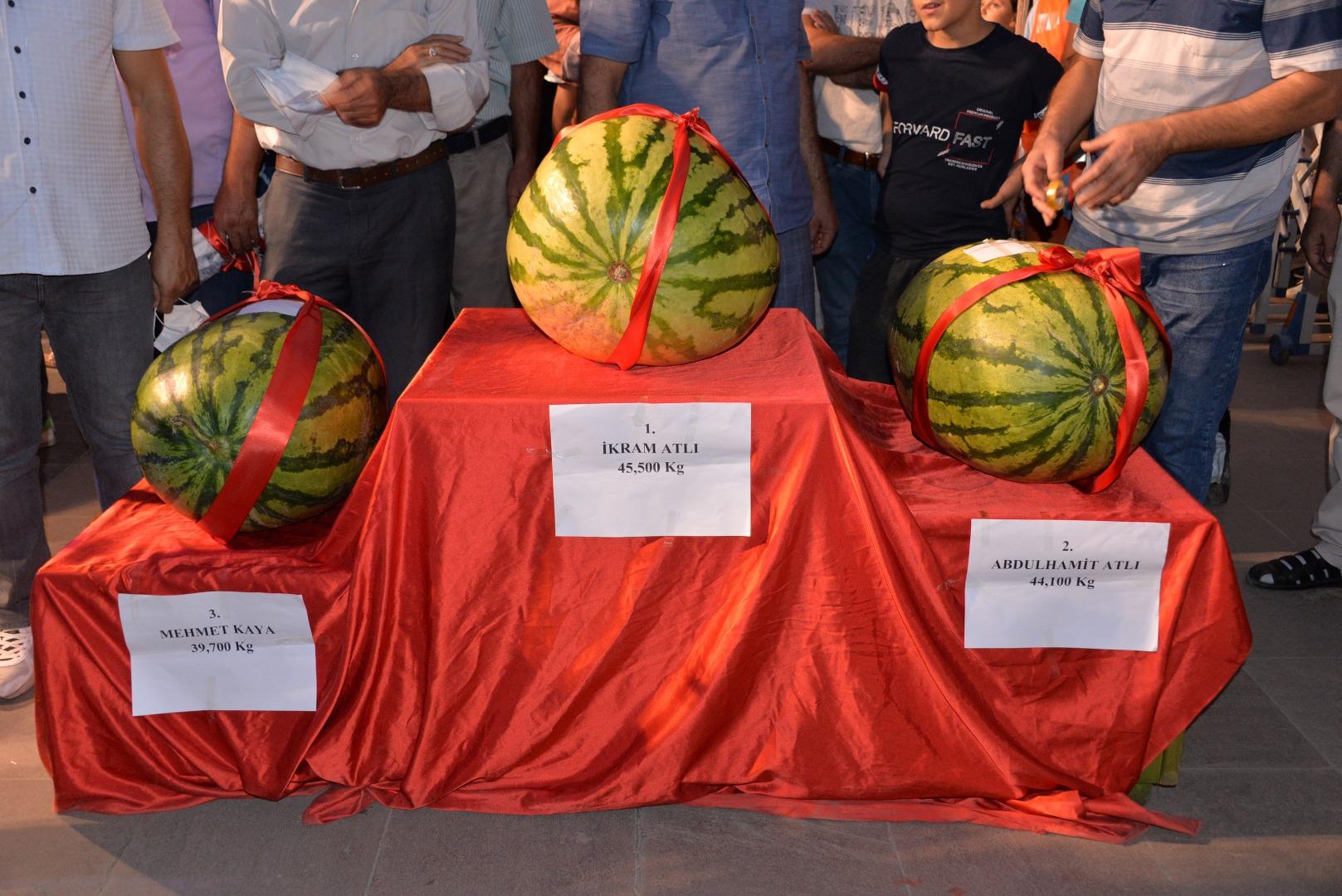 Diyarbakır'daki karpuz festivalinden renkli görüntüler