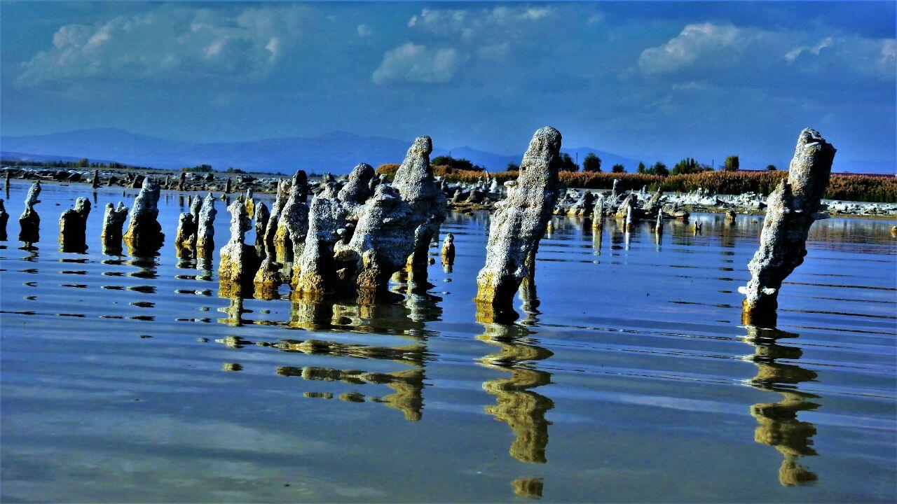 Van Gölü'ndeki mikrobiyalitler yok olma sürecini yaşıyor