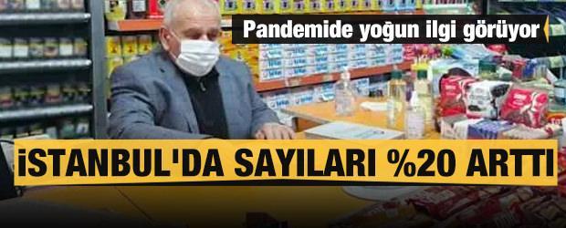 Pandemide yoğun ilgi görüyor: İstanbul'da sayıları yüzde 20 arttı