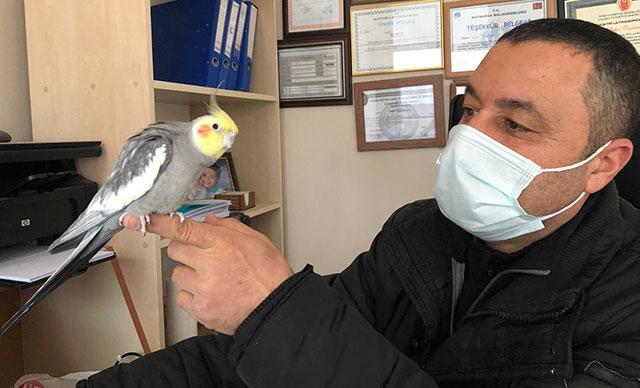 Sultan papağanı ıslık çalarak 'Türkiyem' şarkısını söylüyor